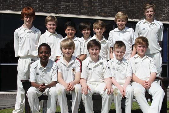 cricket 005 (1)
